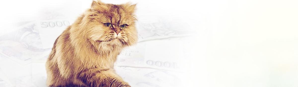 Komerční banka osobní půjčka picture 6